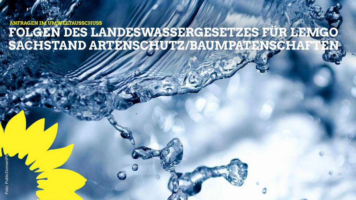 Anfragen im Umweltausschuss: Folgen aus dem umstrittenen Landeswassergesetz und Sachstand Artenschutz und Baumpatenschaften